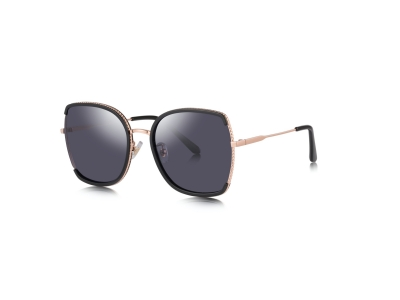 6209 big frame sunglasses