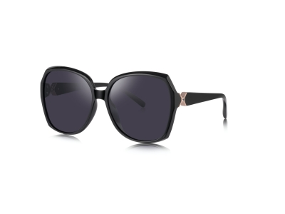 6217 oversize sunglasses