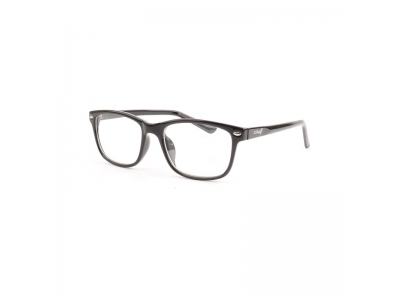 ST13955 Optical glasses